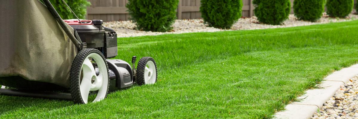 Entretien du jardin entretien parcs rouen entretien jardin travaux jardina - Entretien jardin locataire ...